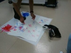 Kohl the Penguin examines his artwork